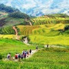 Travel Tips to Sapa