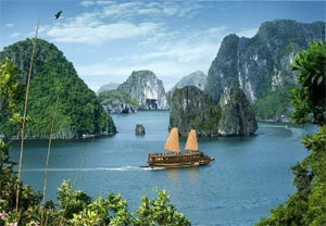 Sea, island tourism – Hanoi travel agencies' strategic investment