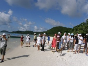 Travel agencies benefit from long Tet holiday