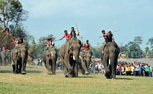 Elephant race marks National Tourism Year