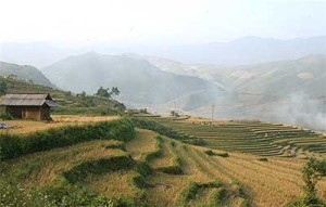 Admiring Hoang Su Phi terraced fields in rainy season